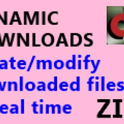 Test Download ZIP